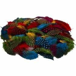100x gekleurde parelhoen sier veren