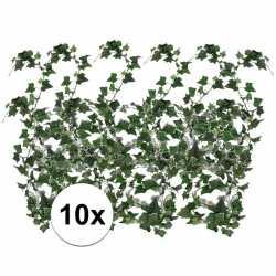 10x klimop slinger hedera helix 180