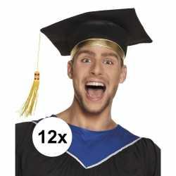 12x afstudeerhoedje / geslaagd hoedje volwassenen