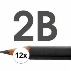 12x hb potloden volwassenen hardheid 2b