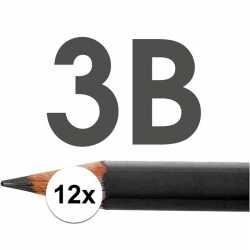 12x hb potloden volwassenen hardheid 3b