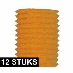 12x treklampionnen oranje 20