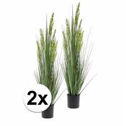 2x groene grain grass grasplant kunstplant in pot 90
