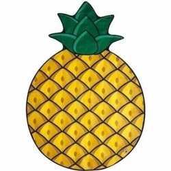 Ananas picknickkleed 150