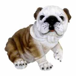 Beeldje engelse bulldog hond 25