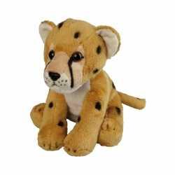 Cheetah knuffeltje 19