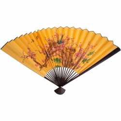 Chinese waaier 100