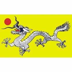 Chinese zwart/witte draak vlag 90 bij 150