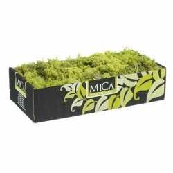 Decoratie/hobby mos lichtgroen 500 gram