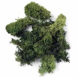 Decoratie mos donkergroen 100 gram