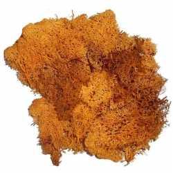 Decoratie mos oranje 50 gram