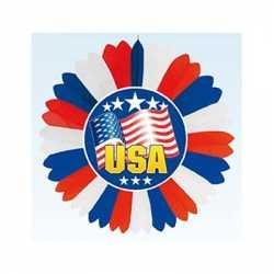 Decoratie waaier Amerika