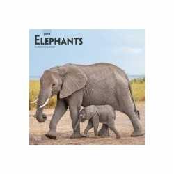 Dieren kalender olifanten 2019