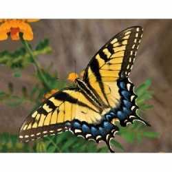 Dieren magneet 3d gele vlinder