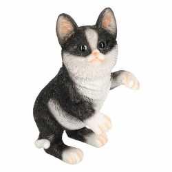 Dierenbeeld kat/poes zwart/wit 24