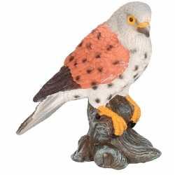 Dierenbeeld torenvalk vogel 11 woondecoratie