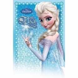 Disney Frozen Elsa poster 61 bij 91,5