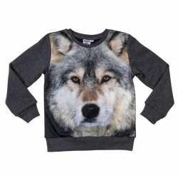 Donkergrijze sweater wolf kinderen