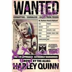 Filmposter suicide squad harley quinn wanted 61 bij 91