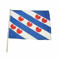 Friesland zwaaivlag 45 bij 30