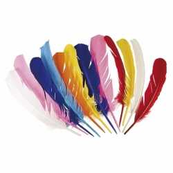 Gekleurde indianen veren 12 stuks