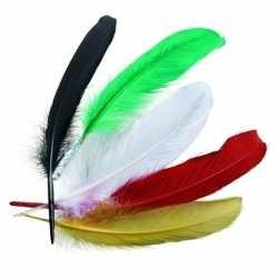 Gekleurde indianenveren 16