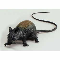 Halloween Piepende rat 13