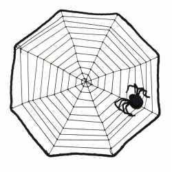 Halloween Spinnenweb spin 40 bij 40
