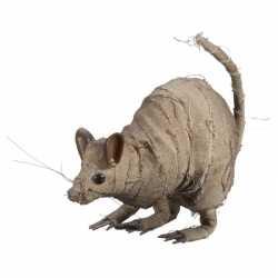 Halloween versiering rat mummie 14