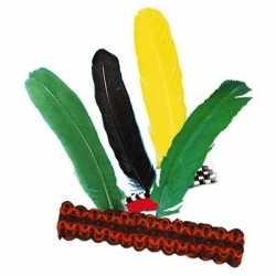 Indianen hoofdband veer