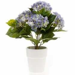 Kunstplant hortensia blauw in witte pot 37