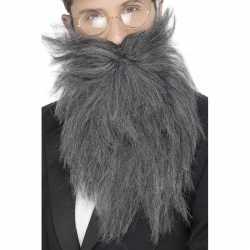 Lange grijze baard snor