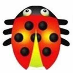 Lieveheersbeestje vlieger 55 bij 65