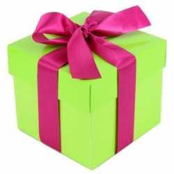 Limegroen cadeaudoosje 10 roze strik