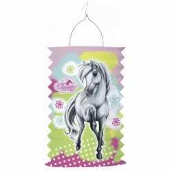 Paarden treklampion 30