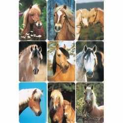Paardenhoofden stickers 3 vellen