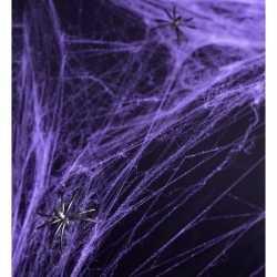 Paarse spinnenweb decoratie 2 spinnen
