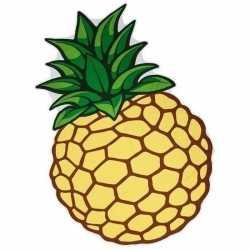 Picknickkleed ananas 120 bij 170