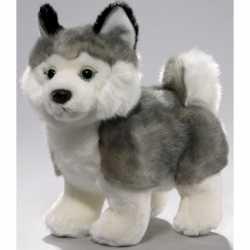 Pluche husky hond knuffel 24