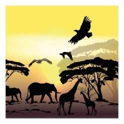 Servetten afrika safari 3 laags 20 stuks