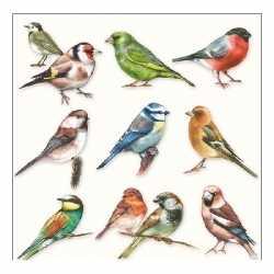 Servetten vogel thema 3 laags 20 stuks