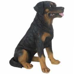 Tuinbeeld rottweiler hond 49