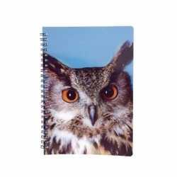 Uilen notitieboek 3d 21cm
