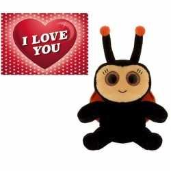 Valentijns cadeau lieveheersbeestje knuffel valentijnskaart