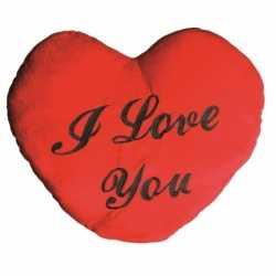 Valentijnscadeau i love you kussen 60