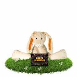 Verjaardag knuffel konijn 22 gratis verjaardagskaart