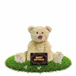 Verjaardag knuffelbeer boogy 35 gratis verjaardagskaart