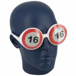 Verkeersborden bril 16 jaar