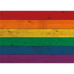 Vintage regenboog vlag poster 84 bij 59