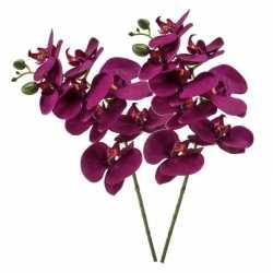 Violet paarse phaleanopsis/vlinderorchidee kunstbloem 70
